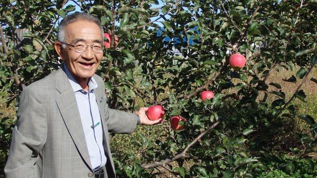 Người nông dân mất 11 năm để trồng được một kỳ tích chấn động Nhật Bản
