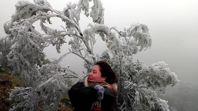 Băng giá tại đỉnh núi Cao Ly (Quảng Ninh)