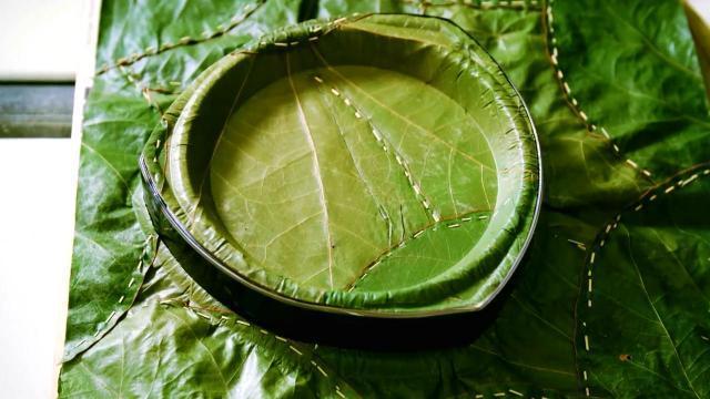 Đĩa ép từ lá cây, giải pháp tuyệt vời thay thế đồ nhựa!