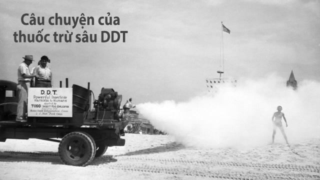 50 năm trước, người ta từng coi thuốc trừ sâu DDT là 'tốt cho sức khỏe'