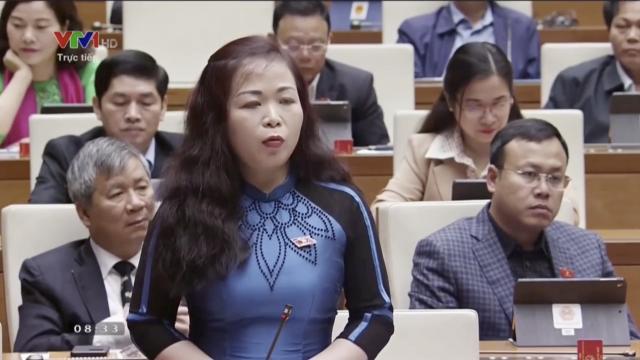 ĐB Vũ Thị Lưu Mai nói về tham nhũng chính sách