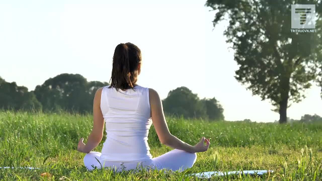 Sự yên tĩnh giúp tế bào não tái sinh, khai trí và giảm áp lực