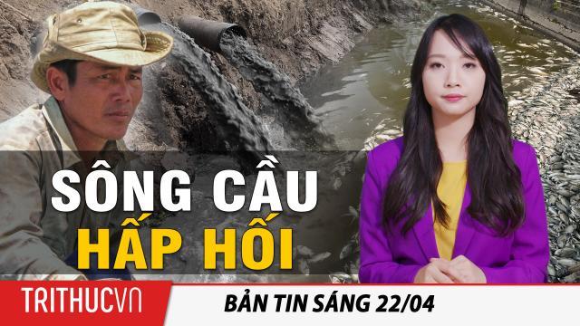 Tin sáng 22/4: Sông Cầu hấp hối, cá chết trắng ao, dân lao đao vì ô nhiễm!
