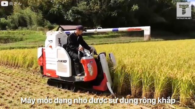 Nông thôn Nhật Bản hiện đại tới mức độ nào?