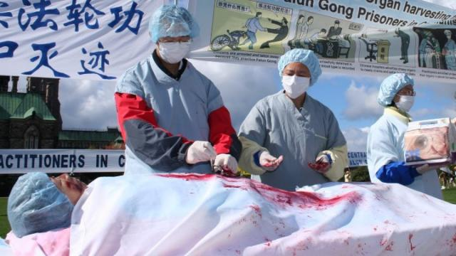 Tòa án: Trung Quốc thu hoạch nội tạng, phạm tội Chống lại loài người