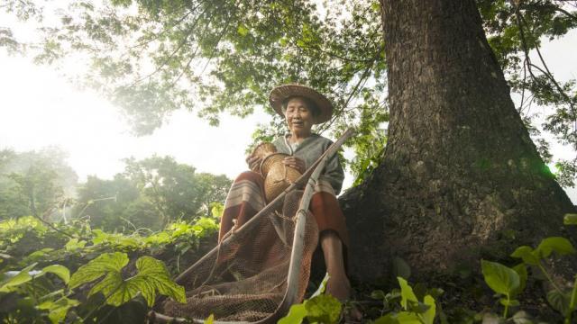 Ikigai – bí quyết sống lâu của người Nhật đang lan tỏa khắp thế giới